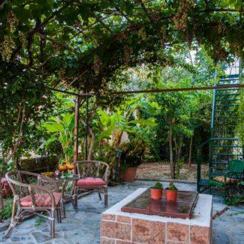 Giardino, Zante Nest studio