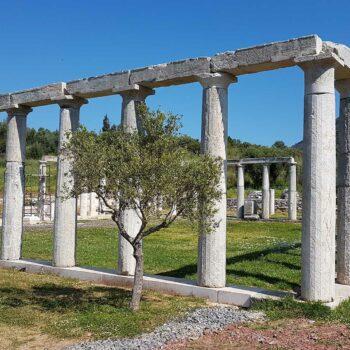 Soggiorni in Grecia | Viaggi Organizzati nelle Isole ...